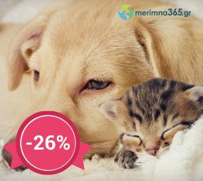 Έως και 26%  έκπτωση στο μοναδικό πρόγραμμα φροντίδας υγείας κατοικίδιων του merimna365.